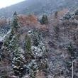 雪降る一日