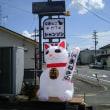 今日 オープン 保護猫カフェ シャンソン