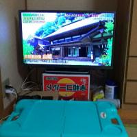 テレビ新調