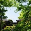 松阪市「朝田寺の牡丹」見てきました~(^^) 2018