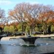和田倉 噴水公園