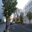 12月の赤坂:赤坂通りと港区立赤坂小学校周辺 PART2