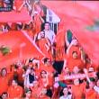 運命の決戦!ワールドカップ・アフリカ代表5カ国が決定!〜失意のコートジボワール