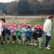幼児たちの麦踏体験