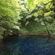 白神山地 十二湖 と円覚寺