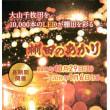 棚田『大山千枚田』 ライトアップ ~1/6迄