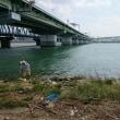 新淀川でハゼ釣り・・・・・歩いて10分