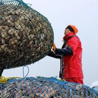 北海道貿易統計(平成30年上半期)水産物の輸出303億・27%増、輸入328億・12%減