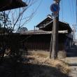 埼玉県名発祥の地 行田の古墳群や忍城を散策。