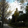 横須賀;ヴェルニ公園・諏訪公園・記念館三笠周遊