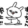 ☆しちごさん☆ capoスザキ