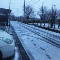 我が家の初雪観測・・