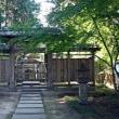 千姫のゆかりの寺 弘経寺の彼岸花