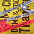 Mr.Children Thanksgiving 25 日産スタジアム