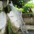 梅雨の晴れ間、垣花樋川へ