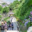 6月 鎌倉の海
