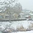 また雪景色・・・