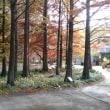 今日は「わくわく園芸講座」水戸市植物公園へ