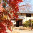 紅葉写真、ラストは地元の神社(1)……!