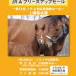 【2019 JRAブリーズアップセール】は本日開催!(午前9時より騎乗供覧スタート)