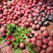 臨時: ジャガイモの収穫