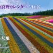 2018年版美瑛・富良野カレンダー