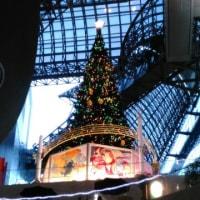 JR京都駅のクリスマスツリー!