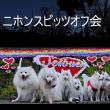 PITZちゃんKINGくんのニホンスピッツオフ会(西武遊園地イルミネーション)