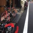 ポタリング日記-33日目-多摩川(羽村堰)