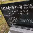 和田騎手とオペラオーと日本代表🇯🇵