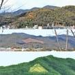 船岡山公園 木伐採し眺望復活へ
