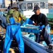 シシャモこぎ網漁終漁(鵡川漁港・大津漁港)