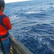モロコ釣りに