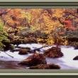 『紅葉景』 奥入瀬渓流