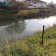 古綾瀬川の水質汚染事故 県に対応策を求めました