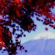 『紅葉の想い出』 富士五湖
