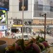 渋谷スクランブル交差点♪