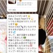 19日(火)可愛いフェアリーさん♬NO.8♪