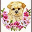 色鉛筆画403 (木瓜の花と子犬)