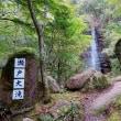 愛知県瀬戸市岩屋堂・鳥屋川の清流とダイモンジソウとアキチョウジ