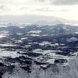 12月のスキー1)