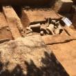 [古代宮都情報告知札]第1号 長岡宮後期内裏外郭築地の発見