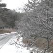 初雪!昨日の山から(平成29年11月19日)