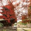 京都市街部の紅葉(2017/11/18~19)