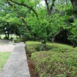 樹林地作業(0726)