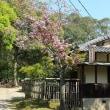 春日大社・興福寺