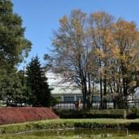 11月10日、県立相原高校の最後の散策会の写真です。