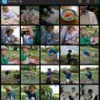 【評価・レビュー】写真の整理の仕方-『F6Exif』『FlexRena84』『QuickPic』