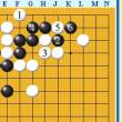 囲碁死活549官子譜