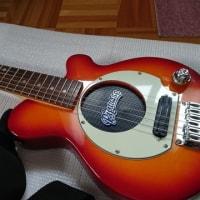 ピグノーズギター
